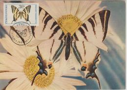 Tchécoslovaquie Carte Maximum 1966 Papillons 1483 - Tchécoslovaquie