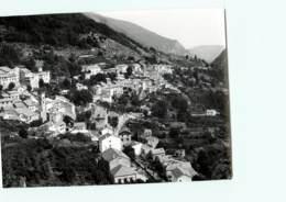 66 - FONTPEDROUSE - Dans La Haute Vallée De Le TET - PHOTOGRAPHE ROBERT PETIT - ATLAS-PHOTO - Fotos