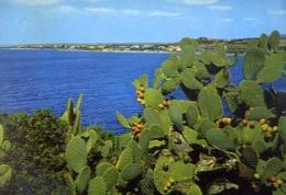 Costa Golfo Degli Angeli - Cagliari - Formato Grande Viaggiata – E 9 - Cagliari