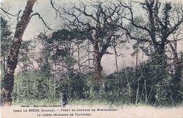 Cpa LA BREDE 33 Forêt Du Château De Montesquieu - Le Chêne Séculaire De Toutifaut - Other Municipalities