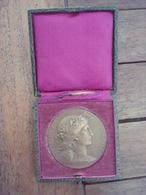 Médaille Prix De Tir Ministre De La Guerre En Boite. - France