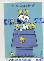 Carte Double.  Schultz Snoopy Sur Sa Niche Avec Oiseaux. Tu Es Super-Géniale. Peanuts Characters. Hallmark - Humour