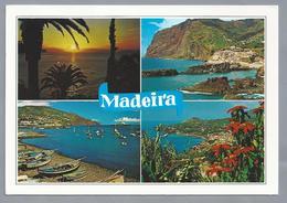 PT.- MADEIRA. - Madeira
