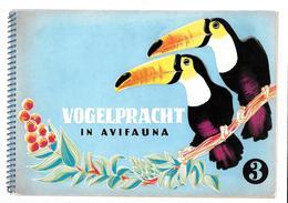 Y521 - 2 ALBUMS TEO ELST - VOGELPRACHT IN AVIFAUNA - OISEAUX EXOTIQUES - COMPLETS 12 IMAGES DANS CHAQUE ALBUM - Albums & Catalogues