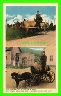 QUÉBEC - OLD NORMAN OX CART & WATERBOY AND DOG CART - C. L. C. - - Québec - La Cité