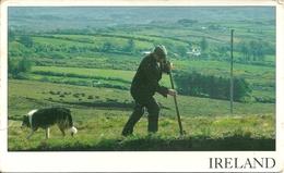Irlanda (Ireland) Irish Landscape, Cutting The Turt, Lavori In Campagna Con La Compagnia Del Cane - Irlanda
