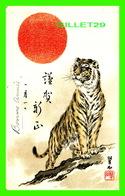 TIGER - TIGRE - CIRCULÉE EN 1906 - - Tigres
