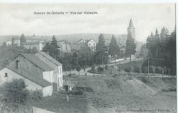 Vielsalm - Avenue De Golonfa - Vue Sur Vielsalm - Baccus Photographe Editeur - Vielsalm