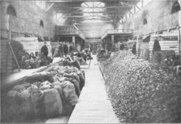 BAUME LES DAMES Société Pipes Ropp Triage Et Classement Des ébauchons 1926 - Non Classés