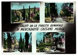 Saluti Da Mercadante/Cassano Murge (Bari) - Vedutine - Viaggiata 1960 (acquerellata) - Bari