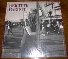 LP 33 T PolyGram 830 296-1 Brigitte Bardot 2 Duos Avec Gainsbourg Remixes 86 - Collectors