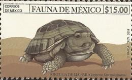 J) 2018 MEXICO, FAUNA OF MEXICO, TURTLE OF MAPIMI, MNH - Mexico