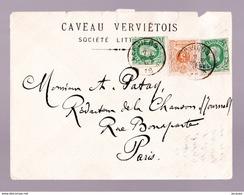 BELG  N° 30 OBL.  ENVELOPPE AFFR. MIXTE  28 Et 2X 30 VERS PARIS - 1869-1883 Léopold II