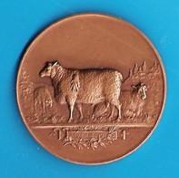 MÉDAILLE En BRONZE - CONCOURS AGRICOLE ISSOUDUN INDRE / BERRY Avec  MOUTONS , BREBIS - SIGNÉE  F. VERNON - Professionnels / De Société