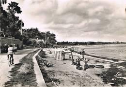 SARZEAU (Morbihan) - Plage De La Pointe Saint-Jacques - Animée - Renault 4 CV - Sarzeau