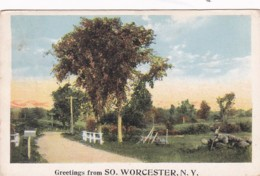 New York Greetings From South Worcester 1922 - NY - New York