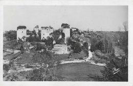 Echiré (Deux-Sèvres) - Le Château Salbart (ruines) Et La Vallée De La Sèvre - Edition Flor - Carte Non Circulée N° 1489 - Autres Communes