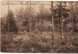 SOUVENIR DE RENAIX LE CUMULUS  1912 - Ronse