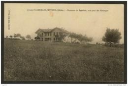 St Germain D'Esteuil (Médoc)-Domaine De Beaulieu, Vue Prise Des Paturages - Autres Communes