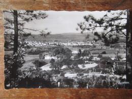 Le Muy. Vue D'ensemble. La Cigogne 83.006.08 Postmarked 1956 - Le Muy