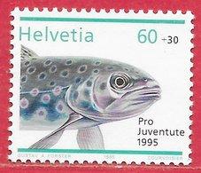 Poisson Truite - Suisse N°1495 60c + 30c 1995 ** - Pesci