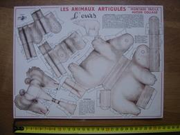 Ancienne PLANCHE VOLUMETRIX Animaux Articules OURS BLANC Montage Facile Aucun Collage - Découpis
