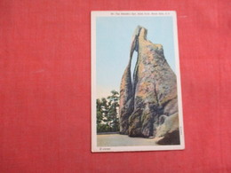 Needle's Eye  State Park  Black Hills South Dakota     Ref 3106 - Verenigde Staten