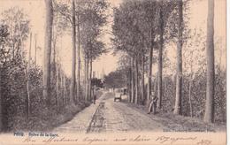 Pecq : Drève De La Gare. - Pecq