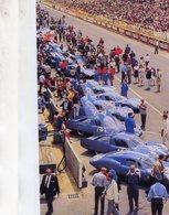 24 Heures Du Mans 1966  -  Equipe Alpine-Renault  -  15x10 PHOTO - Le Mans
