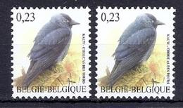 BUZIN  Papier + Kleur Variaties * Nr 3625 * Helder + Dof Fluor Papier * Postfris Xx * - 1985-.. Pájaros (Buzin)