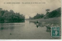 BONNY Sur LOIRE Vue Générale De La Boire Aux Loups-1919- Bon état - Autres Communes