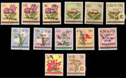 Sud Kasaï 0001/13* Fleurs MLH Voir Curiosités - Sud-Kasaï
