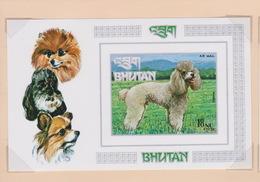 Bhutan SG 276MS 1973 Dogs, Miniature Sheet, Imperforated, Mint Never Hinged - Bhutan