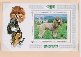 Bhutan SG 276MS 1973 Dogs, Miniature Sheet, Mint Never Hinged - Bhutan