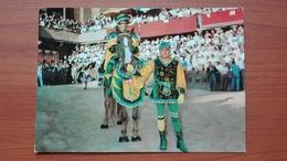 Il Barbaresco Con Il Fantino (Bruco) - Siena
