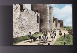 """30 GARD , AIGUES MORTES , Une """" Abrivado """"aux Antiques Remparts - Aigues-Mortes"""
