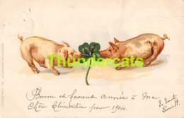 CPA LITHO COCHON COCHONS TREFFLE 1558 ERIKA PIG PIGS SHAMROCK ( PLI - CREASE ) - Cochons