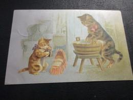 Katten - Chats