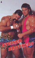 Télécarte  Japon * SUMO * JAPAN (861) LUTTE LUTTEURS WORSTELEN * JUDO * Kampf Wrestling LUCHA Phonecard - Sport