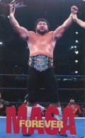 Télécarte  Japon * SUMO * JAPAN (862) LUTTE LUTTEURS WORSTELEN * JUDO * Kampf Wrestling LUCHA Phonecard - Sport