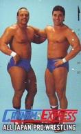 Télécarte  Japon * SUMO * JAPAN (894) LUTTE LUTTEURS WORSTELEN * JUDO * Kampf Wrestling LUCHA Phonecard - Sport