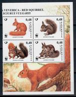 SLOVENIA 2007 - FAUNA ANIMALI - SCOIATTOLI SERIE COMPLETA 4 VALORI - MNH** - Slovenia
