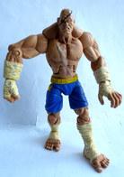 RARE FIGURINE STREET FIGHTER  SF Round 1 SAGAT - CAPCOM SOTA 2004 - Figurines