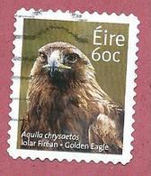 IRLANDA EIRE USATO - 2013 - ANIMALI Golden Eagle (Aquila Chrysaetos) - 60 Ct - MICHEL IE 2043 - Usati
