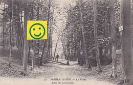 MARLY-LE-ROI La Forêt Allée De La Comédie - Marly Le Roi