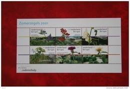 Zomerzegels Sommermarken Summer Stamps NVPH 1973 (Mi Block 70); 2001 Postfris / MNH / ** NEDERLAND / NIEDERLANDE - Unused Stamps