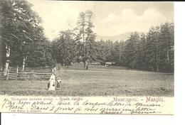 MANGLIS. Grande Clairière. CPA 1899. Rare. Voir Description - Géorgie