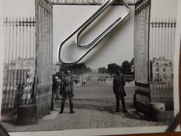 WW2 GUERRE 39 45 VERSAILLES  CHATEAU  SOLDAT ALLEMANDS SENTINELLE DEVANT LES GRILLES BELLE PERSPECTIVE - Versailles
