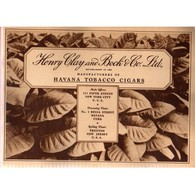 HAVANA TOBACCO CIGARS: Henry Clay And Bock & Co Ltd NICE With 40 Pages Of Photos - Around Cigars