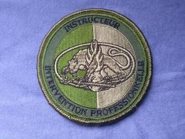 Écusson Gendarmerie Instructeur Intervention Professionnelle N°15 - Ecussons Tissu
